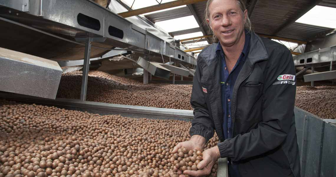 Article written for the macadamia industry about management practices to improve productivity
